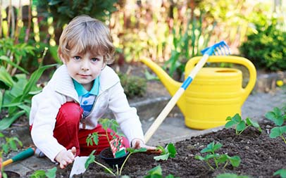 10 Tricks of the Trade for Small Gardens